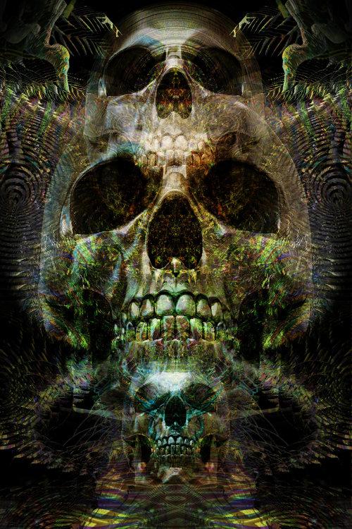 Untitled-12345 psd  skull 2 .jpg