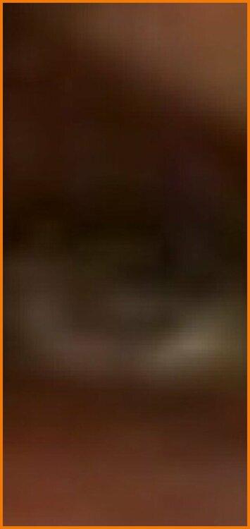 Screenshot_20200911_224955_com.android.chrome.jpg