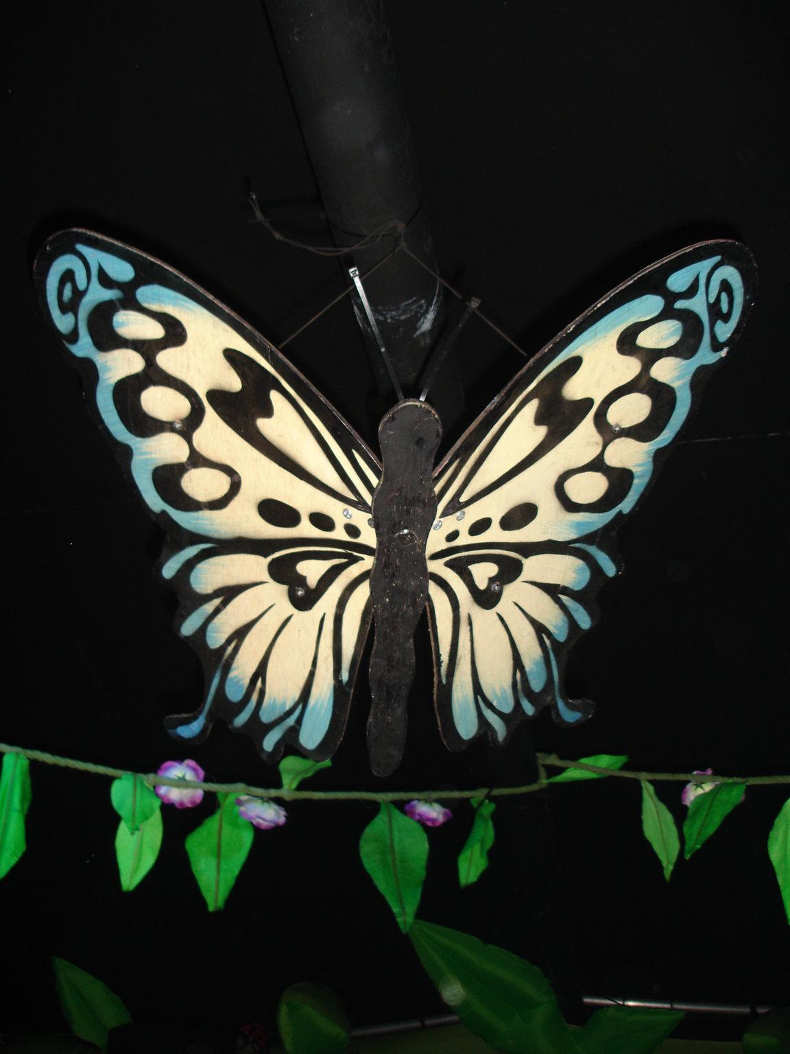 DSC03625_Butterfly.JPG